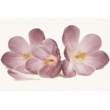 Casablanca декор цветок 30X45