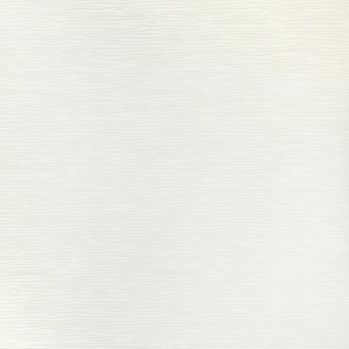 Olivio Біла 42X42