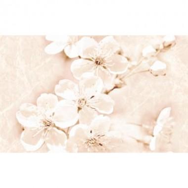 SOFI INSERTO FLOWER 25X40