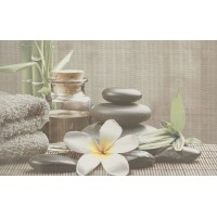 Декор OLIVIA DECOR GREY SPA1 25x40